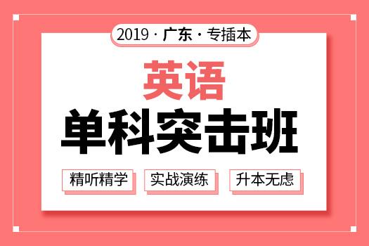 2019年广东专插本英语单科突击班