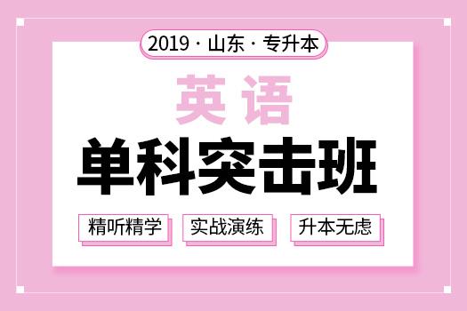 2019年山东专升本英语单科突击班