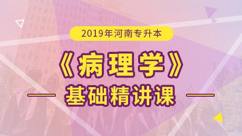 2019年河南专升本病理解剖学基础精讲课