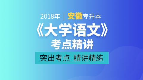2019年安徽专升本大学语文基础精讲