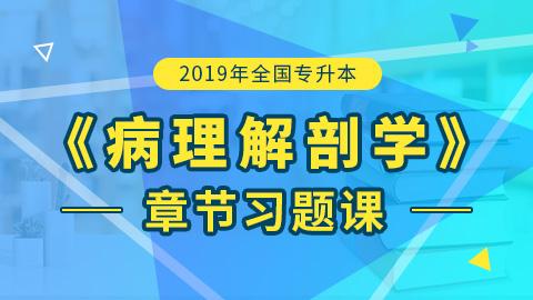 2019年全国统招专升本病理解剖学章节习题