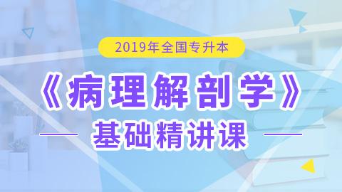 2019年全国统招专升本病理解剖学基础精讲