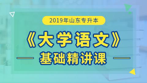 2019年山东专升本大学语文基础精讲课