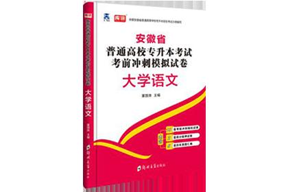 2020年安徽专升本考前冲刺模拟卷-大学语文