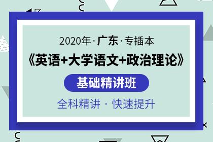 2020年广东专插本基础精讲班(英语+大学语文+政治理论)
