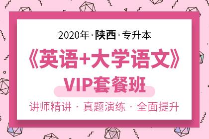 2020年陕西专升本《英语+大学语文》VIP套餐班