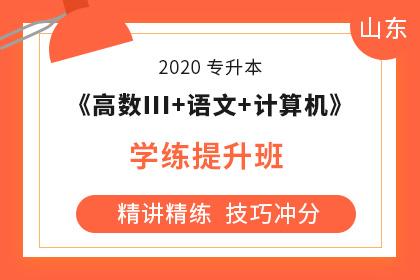 2020年山东专升本《大学语文+计算机+高数Ⅲ》学练提升班