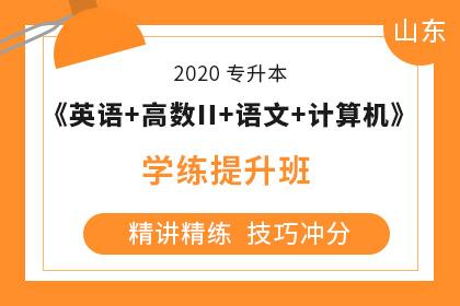 2020年山东专升本《大学语文+英语+计算机+高数Ⅱ》学练提升班
