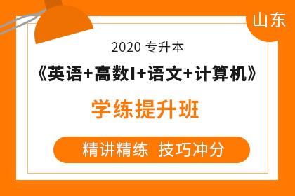 2020年山东专升本《大学语文+英语+计算机+高数Ⅰ》学练提升班