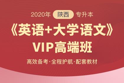2020年陕西专升本《英语+大学语文》VIP高端班