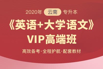 2020年云南专升本VIP高端班·英语+大学语文(更新中)