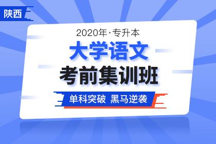 2020年陕西专升本大学语文考前集训班(更新中)