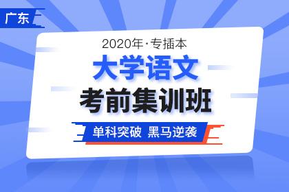 2020年广东专插本大学语文考前集训班