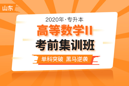 2020年山东专升本高等数学II考前集训班