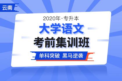 2020年云南专升本大学语文考前集训班(更新中)