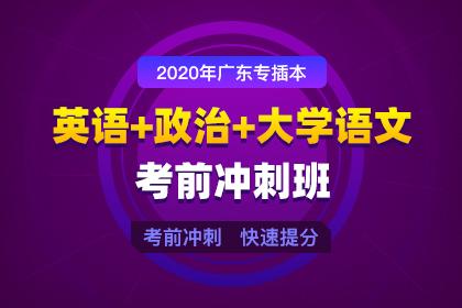 2020年广东专插本英语+政治+大学语文考前冲刺班