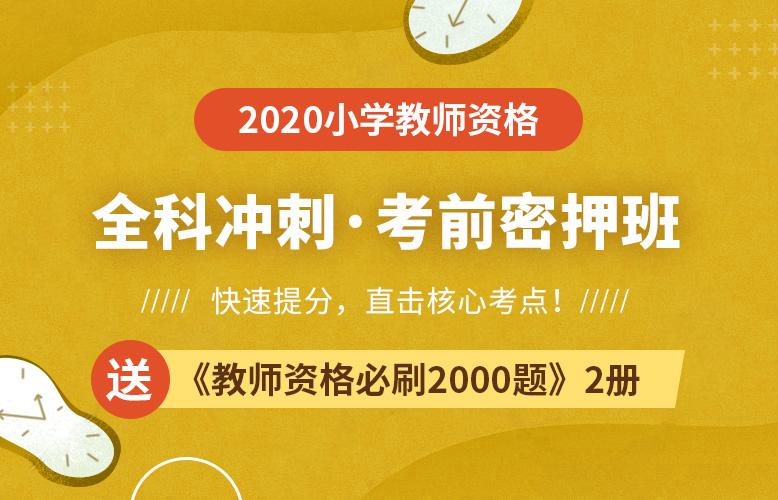 2020小学教师资格考前密押班【快速提分,直击核心考点】