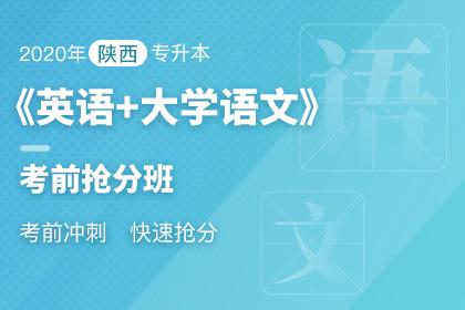 2020年陕西专升本《英语+大学语文》考前抢分班