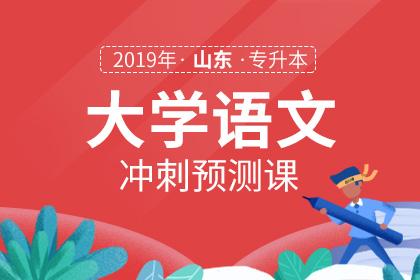 2019年山东专升本大学语文冲刺预测课
