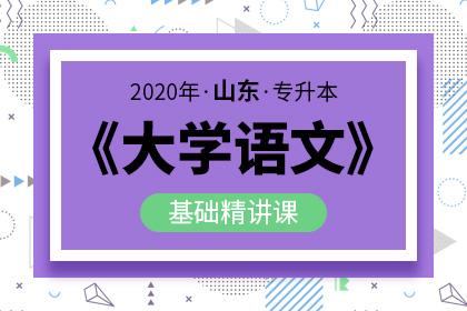 2020年山东专升本大学语文基础精讲课(预售)