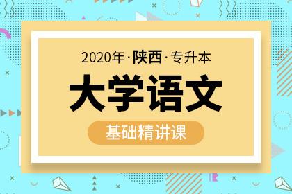 2020年陕西专升本大学语文基础精讲课(预售)