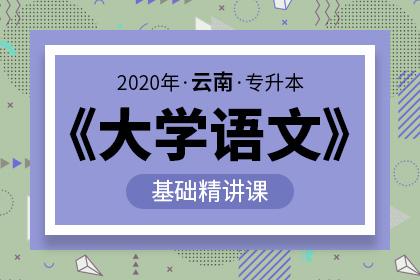 2020年云南专升本大学语文基础精讲(预售)