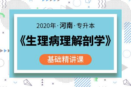 2020年河南专升本生理病理解剖学学基础精讲课(预售)