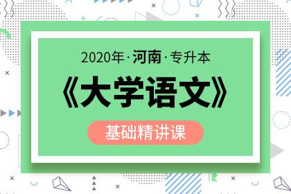 2020年河南专升本大学语文基础精讲课(预售)