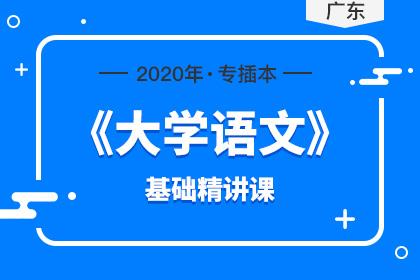 2020年广东专插本大学语文基础精讲课(预售)