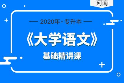2020年河南专升本大学语文基础精讲课(更新中)