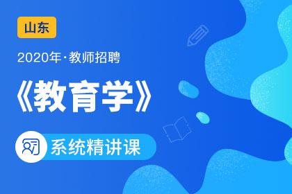 2020年山东教师招聘教育学系统精讲课(更新中)