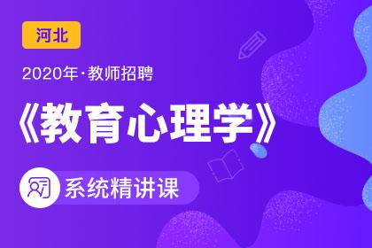2020年河北教师招聘教育心理学系统精讲课(预售)