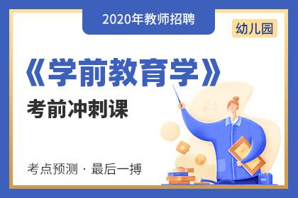 2020年幼儿园教师招聘学前教育学考前冲刺课(更新中)