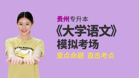 2019年贵州省普通高校专升本《大学语文》考试考前冲刺模拟试卷考场